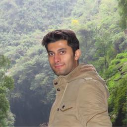 Mahdi Ghorbanpour's profile picture