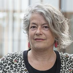 Ir. Brigitte F.S.A. Van Bakel