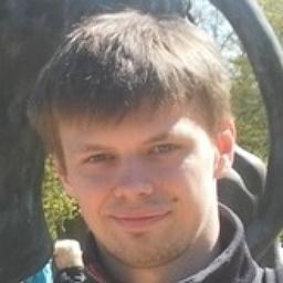 Denis Berezin's profile picture