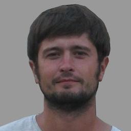 Ilia Brykin's profile picture
