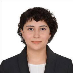 Pelin Öztürk - University of Turkish Aeronautical Association - Ankara