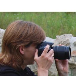 Annett Kohlberg - Creative Studio für Foto- & Videodetail - Halle (Saale)