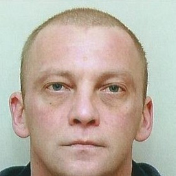 Wladislav Panin's profile picture