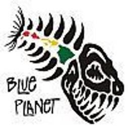 Blue Planet Surf - Blue Planet Surf - Honolulu