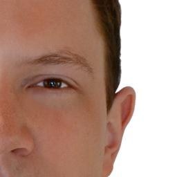 Patrick Seitz's profile picture