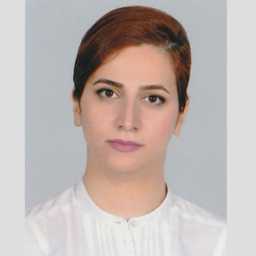 Shadi Elmi Chegeni - City University of London - Frankfurt am Main