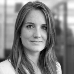 Vivien E. Buechler - VAteam GmbH - Zurich