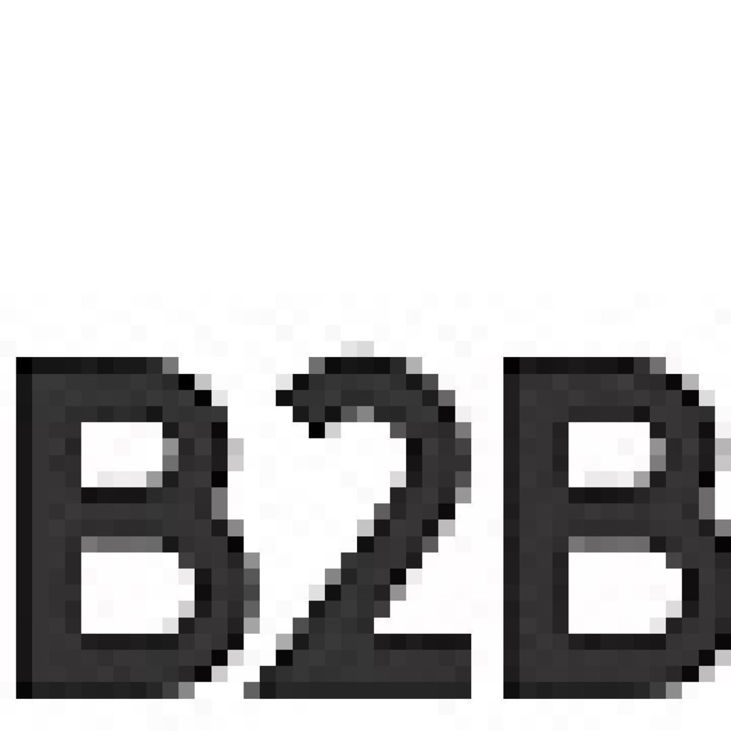 Btob Dataquest B2b B2b Xing