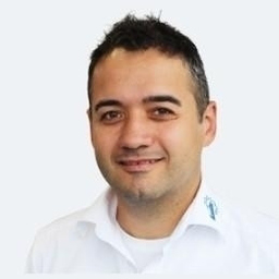 Ulrich Frisch's profile picture