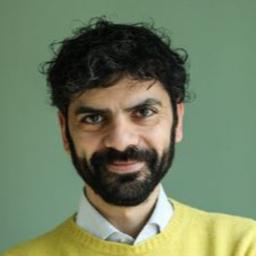 Alessandro Alviani's profile picture